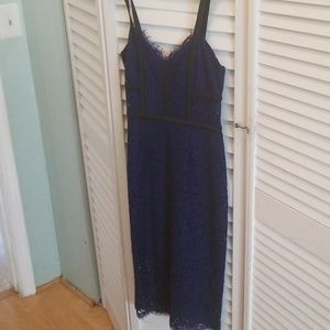 Express Navy Lace Dress